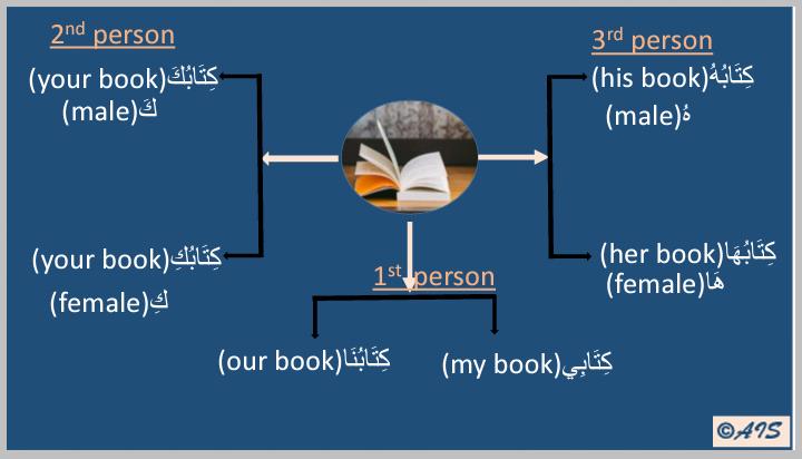The Arabic possessive pronouns